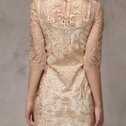 Slim embroidered lace dress #100106..